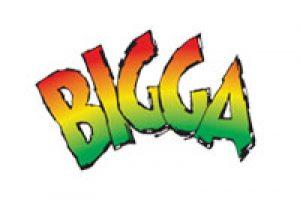 bigga_logo