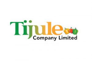 tijule_logo